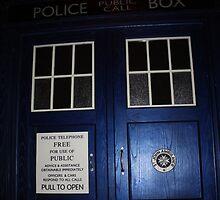 Doctor Who Tardis Door - Tom Baker by Katherine Case