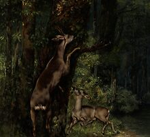 Deer in the Forest, 1868 by Bridgeman Art Library