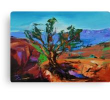 Among the Red Rocks - Sedona Canvas Print
