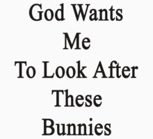 God Wants Me To Look After These Bunnies by supernova23