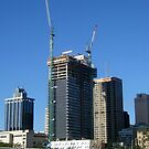 thee cranes ov Brisbane 2013 DAILY TOUR - Day 47 by Craig Dalton