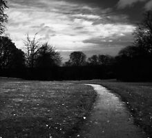 path of priory park  by Gary Sutton