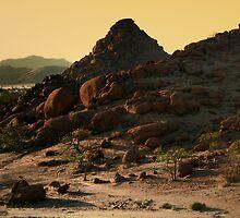 Iwanna Rock  by areyarey