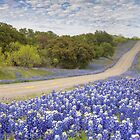 Texas Bluebonnet Highway in the Texas Hill Country by RobGreebonPhoto