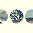Coastal by S. Raja