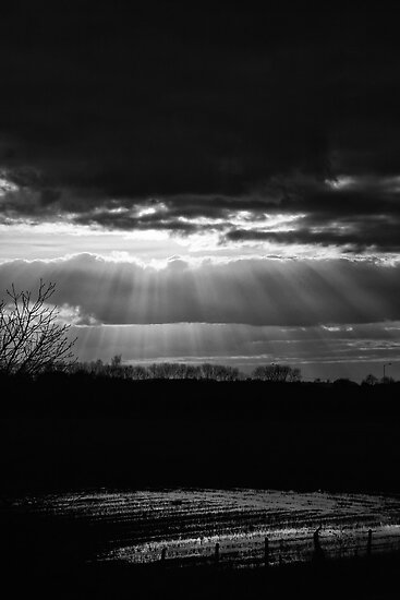 Rays of light.  by Paul Richards
