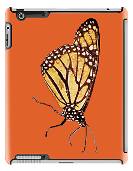 Monarch Butterfly Print On Dark Orange by DreamByDay