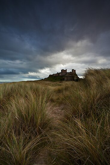Bamburgh Castle From The Dunes by damophoto