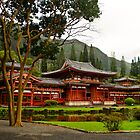 The Byodo-in Temple by raymona pooler