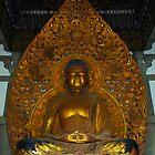 Meditation Buddha by raymona pooler