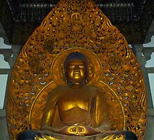Meditation Buddha by raymona pooler