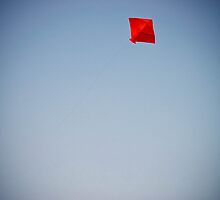 Kites rise highest against the wind, not with it 2 by Th3rd World Order