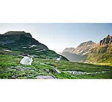 Mountain Goat at Logan Pass - Glacier National Park, Montana Photographic Print