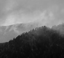 A Mountain in the Clouds - Great Smoky Mountains National Park, North Carolina by Jason Heritage
