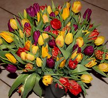 An Ocean Full Of Tulips II by vbk70
