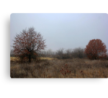 Last Remnant of Fall Canvas Print