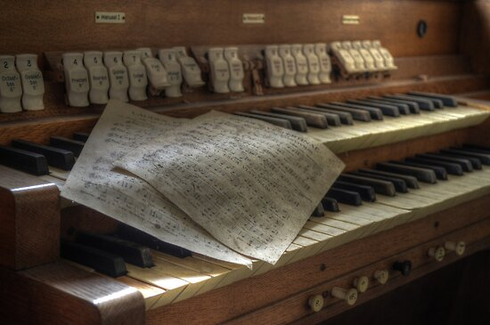 church organ by Nicole W.
