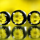Abstract balls refraction by Dipali S
