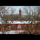 Nikola Tesla's Wardenclyffe Laboratory Building Tower - Shoreham, New York by © Sophie Smith