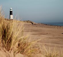 The Lighthouse Beyond the Dunes by rubyrainbow