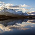Ben Loyal At Dawn by derekbeattie
