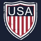 Vintage USA team badge by confusion