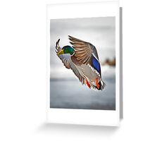 Wrap Around Greeting Card