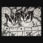 Sugar Glider Garden by jkartlife