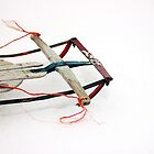 Runner Sled by AbigailJoy