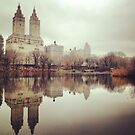 Central Park in reflection  by Danny  Daly