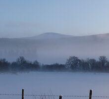 Snowy Fenceposts 2 by Jennifer J Watson