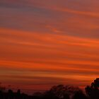 Stripy Orange Sunset by Vicki Spindler (VHS Photography)