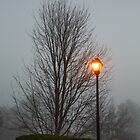 Foggy Morning by dbvirago