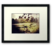 Forbidden Memory Framed Print