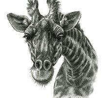 Giraffe G2012-049 by schukinart