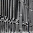 old cast iron fence  by mrivserg