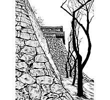 Matsuyama castle, Japan Photographic Print