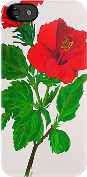 Red Hibiscus by taiche