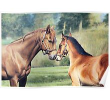 "Fine art equine painting ""Gentle kiss"" Poster"