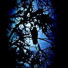 The Raven (dark) by Maria Tzamtzi