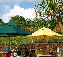 """Dole Pineapple Plantation"" by ctstheman"