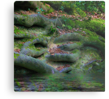 Roots in the Hundred Acre Wood Metal Print