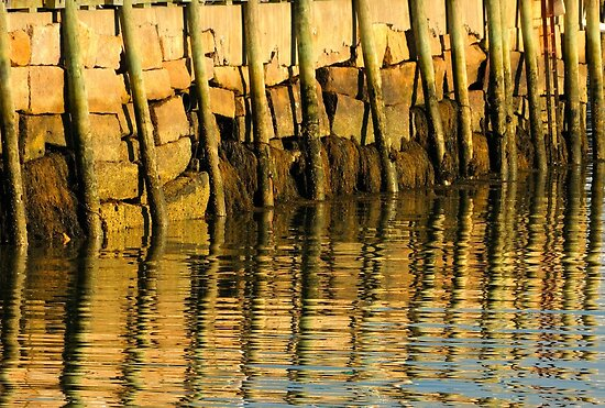 Port Clyde, Maine by fauselr