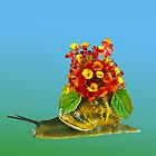Snail and flowers by Benjamin Gelman