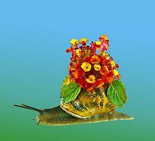 Snail and flowers by Benjamin Gelman