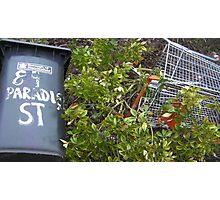 "89 ""Paradise"" Street Photographic Print"