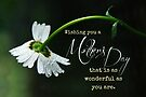 Wonderful Mother's Day (Card) by Tracy Friesen