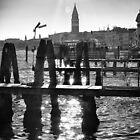 Venice by Andrew & Mariya  Rovenko