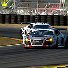 Audi R8 Grand-Am - APR Racing by Timothy Meissen