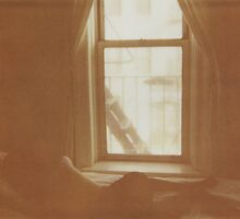 Dreaming by Anna Marcell